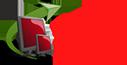 Tampa PC Web Design and Development in Riverview, FL